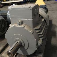 ROTOR motor  5RN132M04V – New